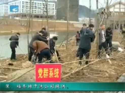 上班第一天:干部带头倡新风 植树栽种新希望