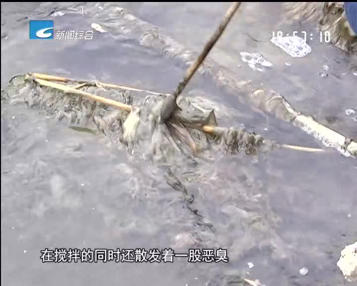 """[每周聚焦]青田海溪:河道脏乱差 治水""""拖后腿"""""""