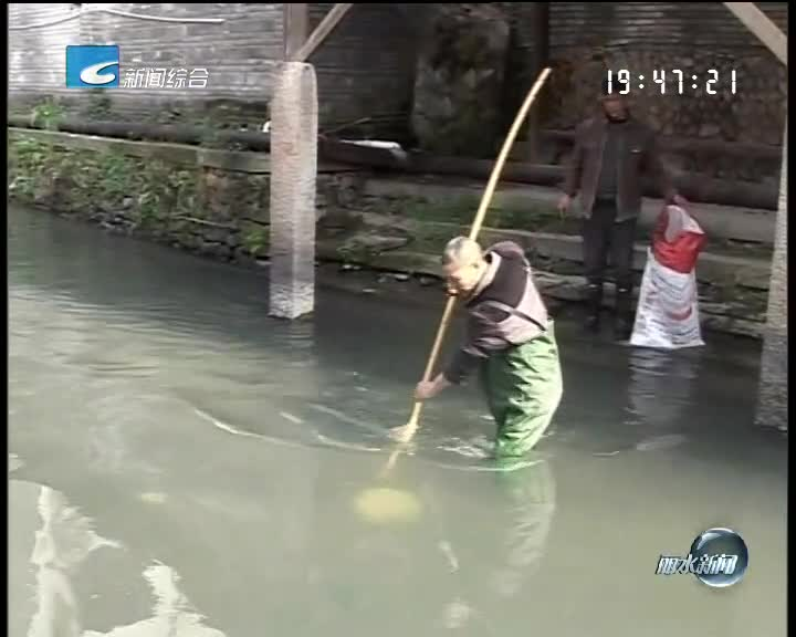 [每周聚焦]反馈: 庆元、龙泉、缙云、莲都采取污水整治行动