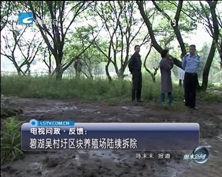 [电视问政·反馈]碧湖吴村圩区块养殖场陆续拆除
