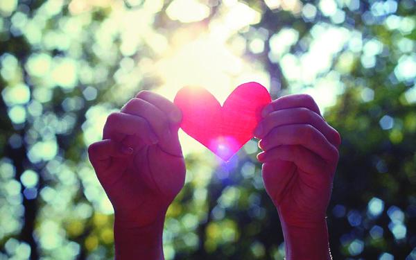 脆弱的爱情