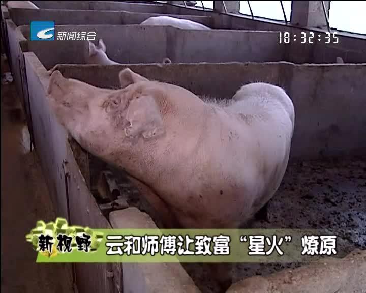 """【乡里乡亲】云和师傅让致富""""星火""""燎原"""