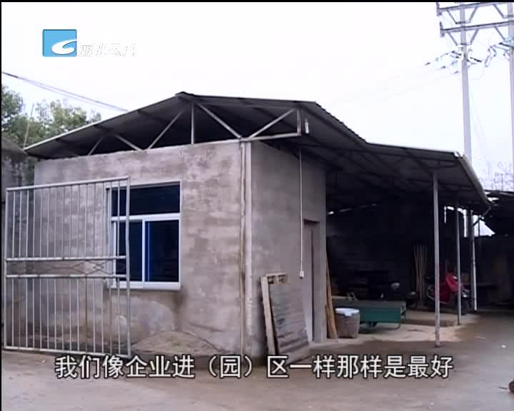 【每周聚焦】松阳:违法生产十年的木材厂何去何从?
