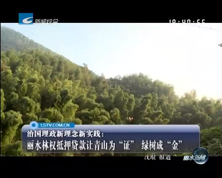"""丽水林权抵押贷款让青山为""""证"""" 绿树成""""金"""""""
