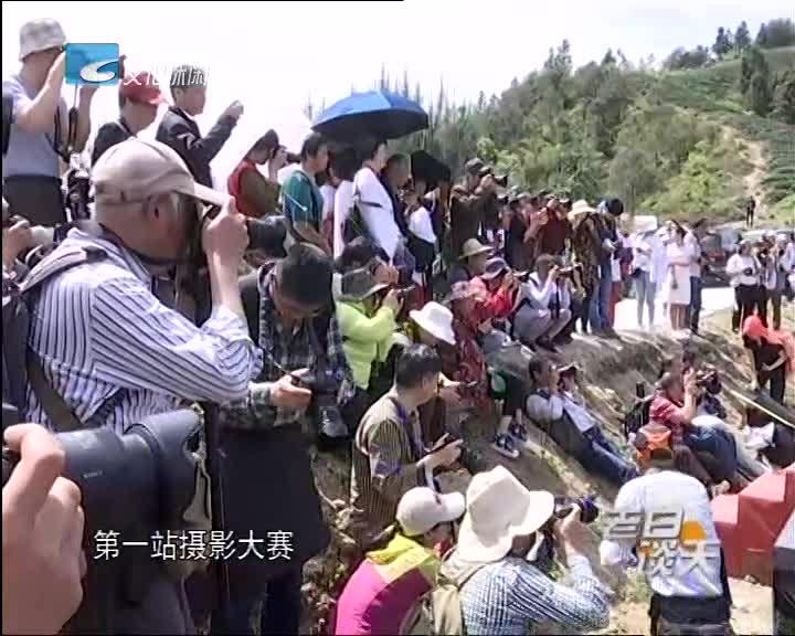 茶文化摄影大赛 助力农业转型升级
