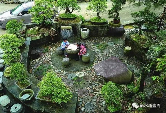 无景园:民宿与盆景世界的完美融合