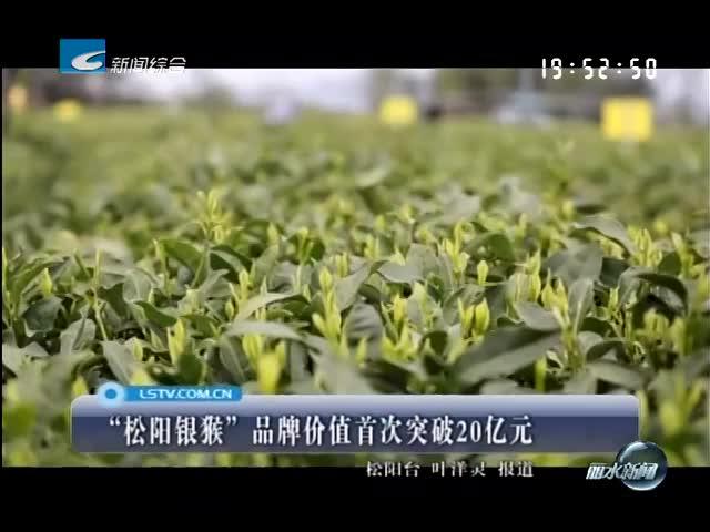 """""""松阳银猴""""品牌价值首次突破20亿元"""