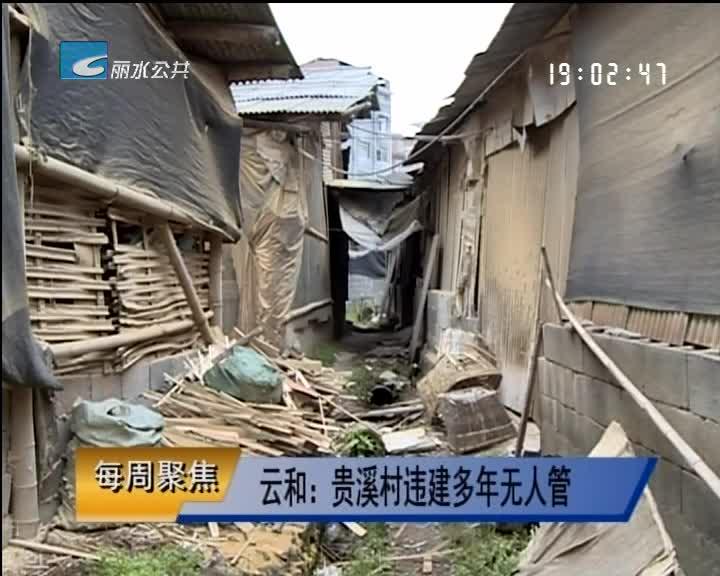 【每周聚焦】云和:贵溪村违建多年无人管