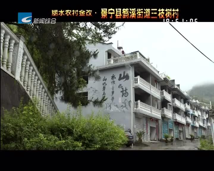 """【改革生金】""""信用之花""""绽放丽水大地(下)"""