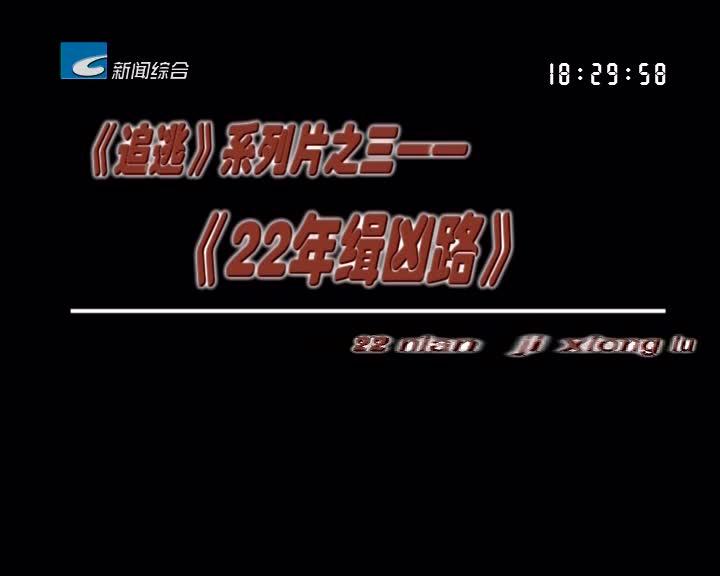 【瓯江警视】《追逃》系列片之三——《22年缉凶路》