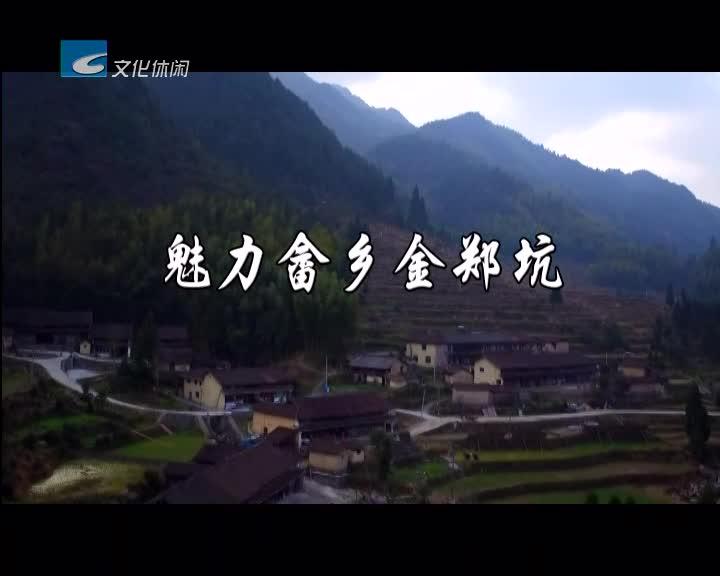 【绿谷采风】魅力畲乡金郑坑