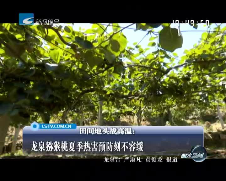 龙泉猕猴桃夏季热害预防刻不容缓