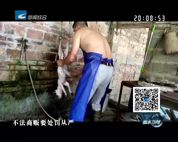电视问政·回顾:庆元、龙泉:狗肉屠宰售卖缺乏监管