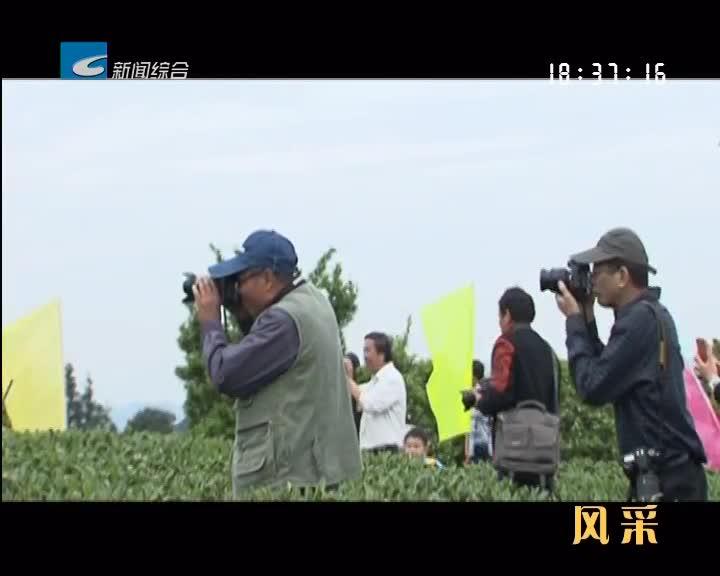 """【风采】松阳农旅融合记:打造山区旅游界的""""网红"""""""
