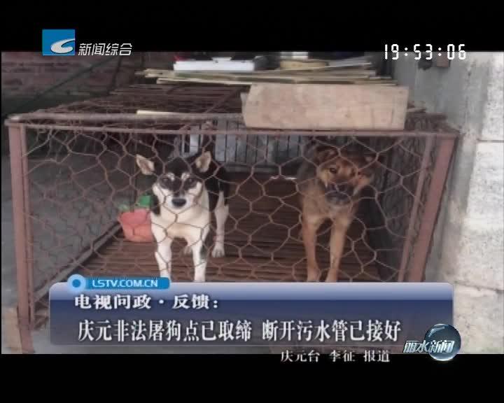 庆元非法屠狗点已取缔 断开污水管已接好