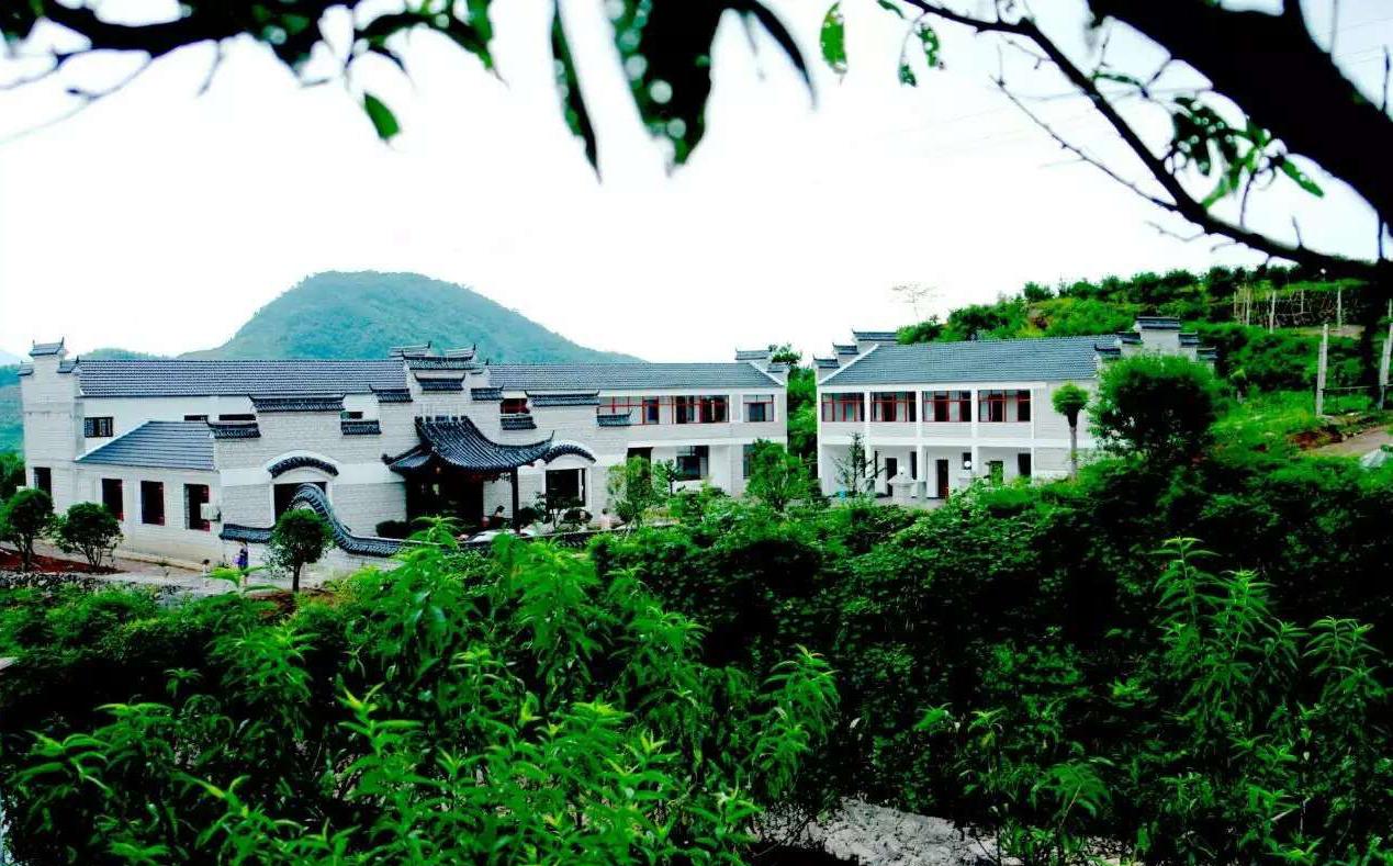 缙云新建镇:秀丽山水,生态乡村(上)