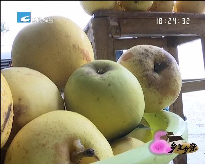 【乡里乡亲】高温下 我的梨儿很受伤