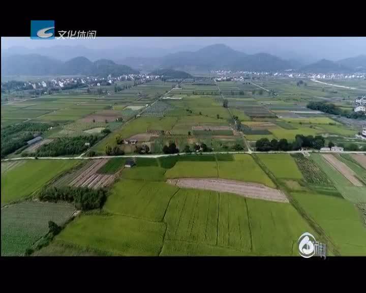 以农兴旅以旅促农 打造现代农业园区新亮点