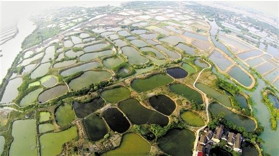 世界灌溉工程遗产中国再添三员,这样的生态遗产浙江也有