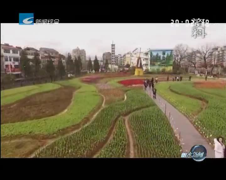 [喜迎十九大]寻找丽水最美绿道系列之(四):云和浮云溪环线绿道 让城市生活更美好