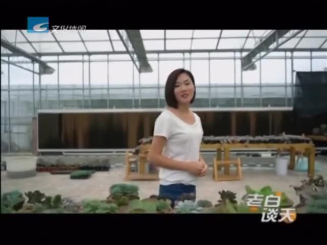 喜迎十九大——主播带你看变化:主播蒋凯妃:多彩农业 富民增收