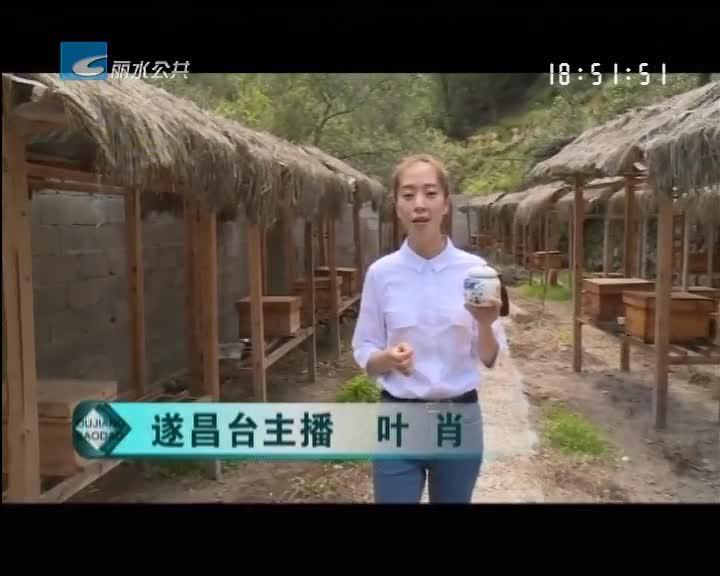 【喜庆十九大 主播带你看变化】遂昌垵口:扶持中蜂养殖 助力精准扶贫