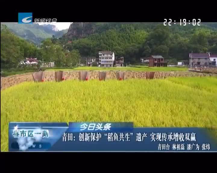 """青田:创新保护""""稻鱼共生""""遗产 实现传承增收双赢"""