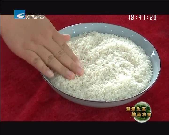 【聚焦生态精品农业】丽水十佳稻米出炉记