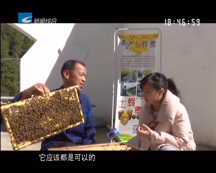 【风采】龙泉:甜蜜的事业