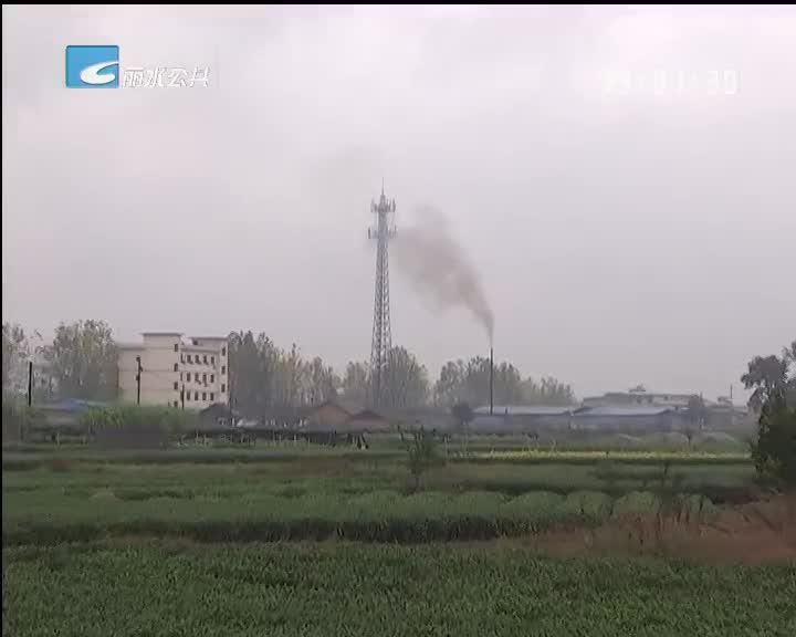 【每周聚焦】松阳:瑞丰毛竹加工厂影响环境