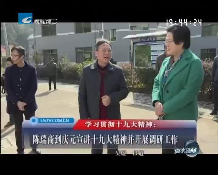 陈瑞商到庆元宣讲十九大精神并开展调研工作