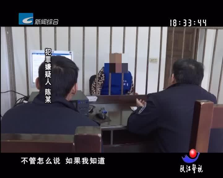 【瓯江警视】车顶惊魂