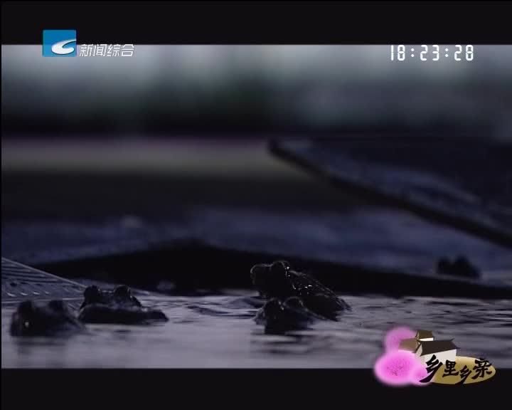 【乡里乡亲】石蛙养殖前景好