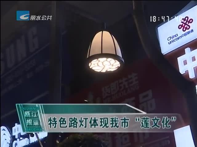 """特色路灯体现我市""""莲文化"""""""