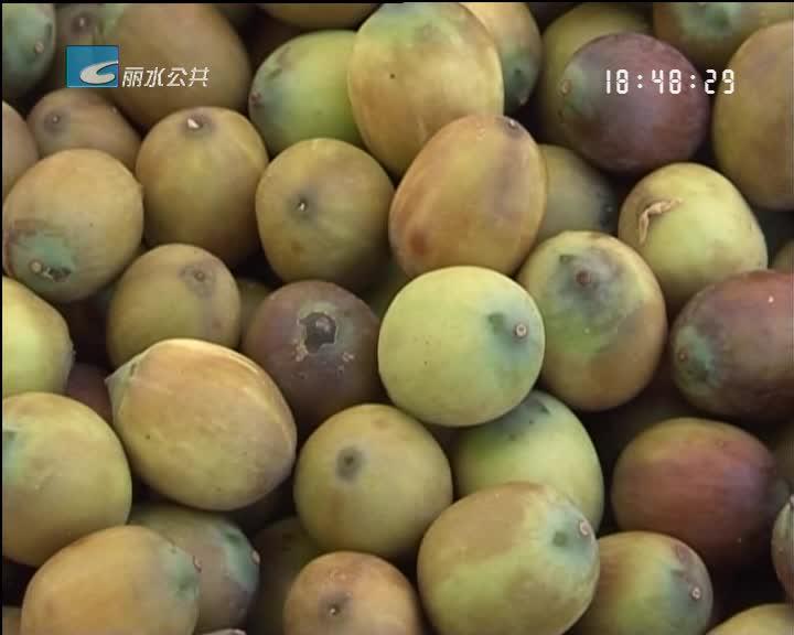 我市农产品入选2017全国名特优新农产品目录