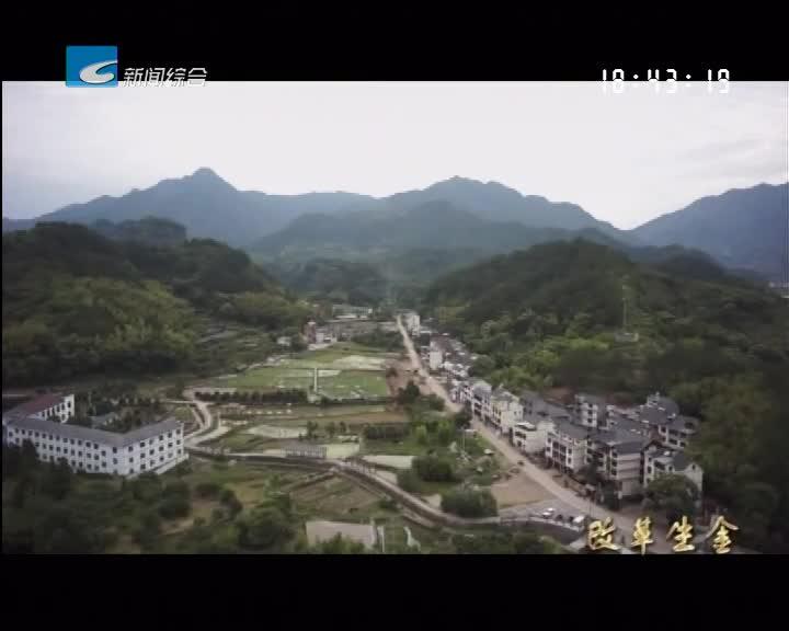 【创富人才】毛荣岳的乡村复兴梦
