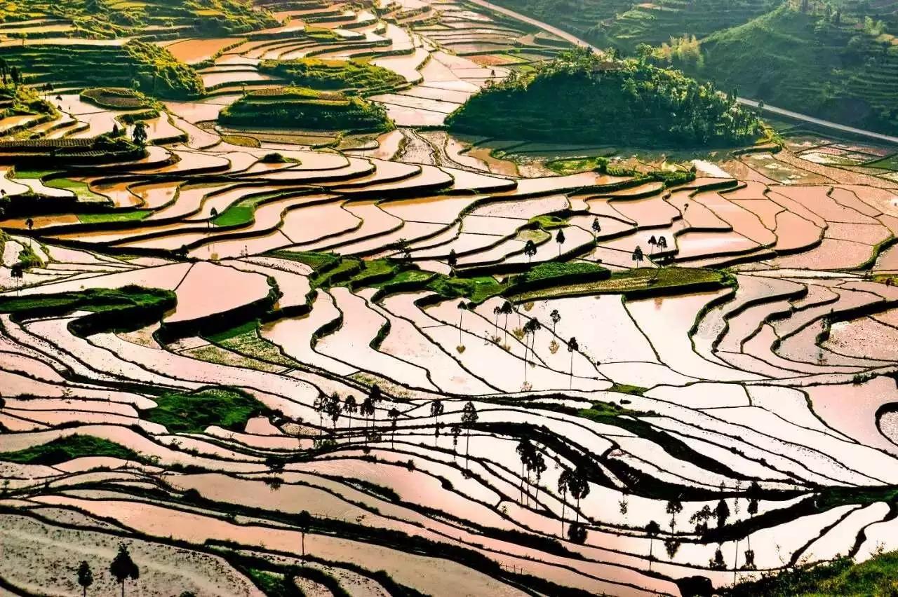 有你家乡吗?第四批浙江省非遗旅游景区公布,丽水这些地方上榜!