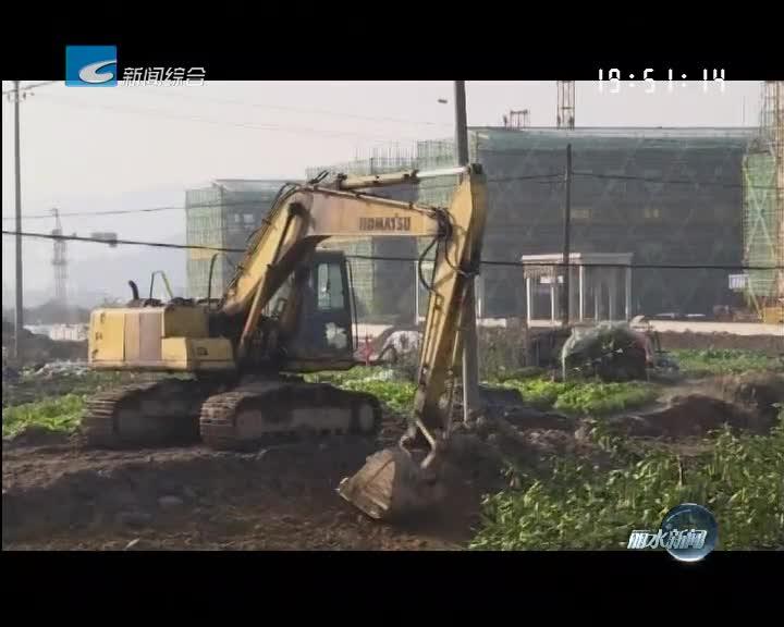 关注丽阳坑 丽阳溪水系综合整治工程二标段绿化工程开始动工