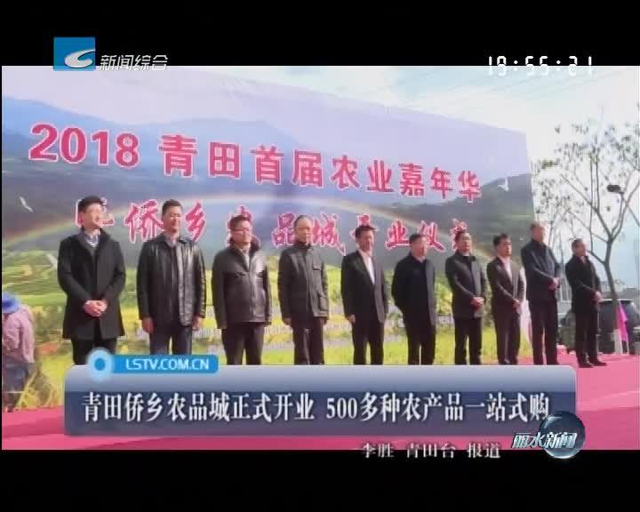 青田侨乡农品城正式开业 500多种农产品一站式购