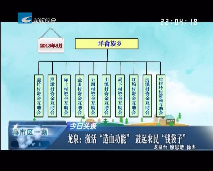 """龙泉:激活""""造血功能"""" 鼓起农民""""钱袋子"""""""