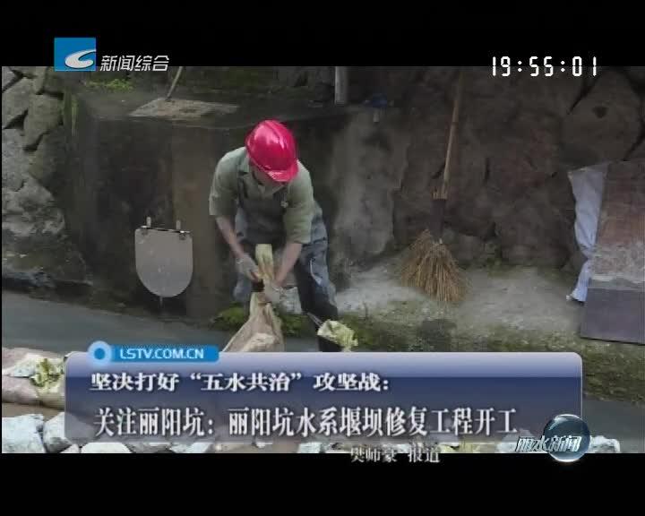 关注丽阳坑:丽阳坑水系堰坝修复工程开工