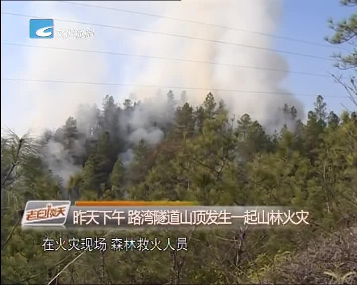 昨天下午 路湾隧道山顶发生一起山林火灾