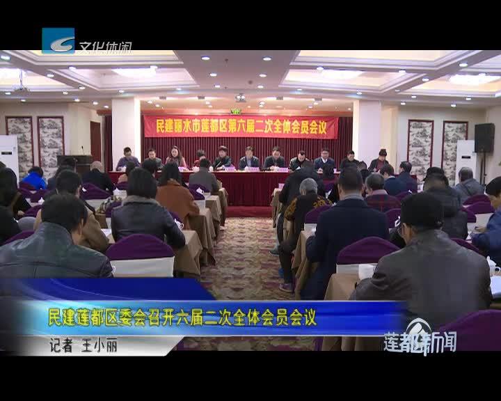 民建莲都区委会召开六届二次全体会员会议