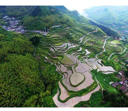 遂昌高坪乡:农旅融合 重塑乡村风貌