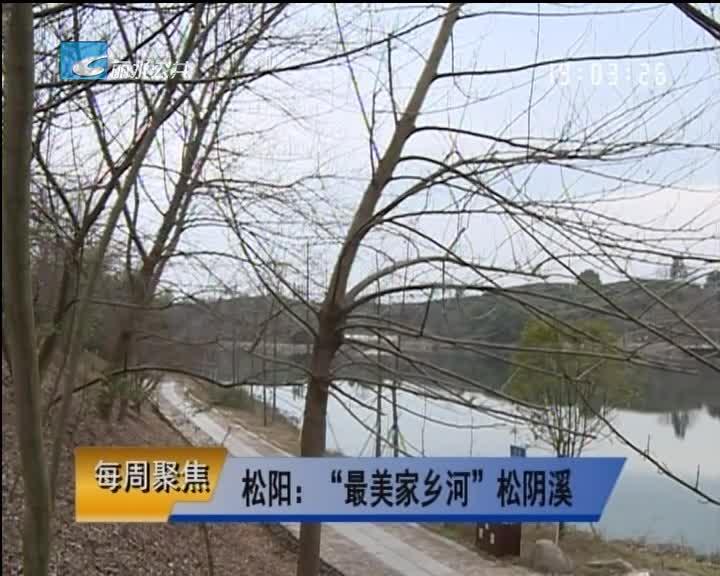 """【每周聚焦】松阳:""""最美家乡河""""松阴溪"""