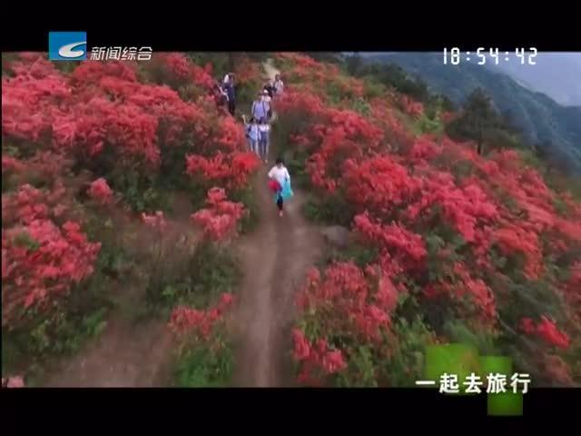 【一起去旅行】春天三部曲《遇见花开》