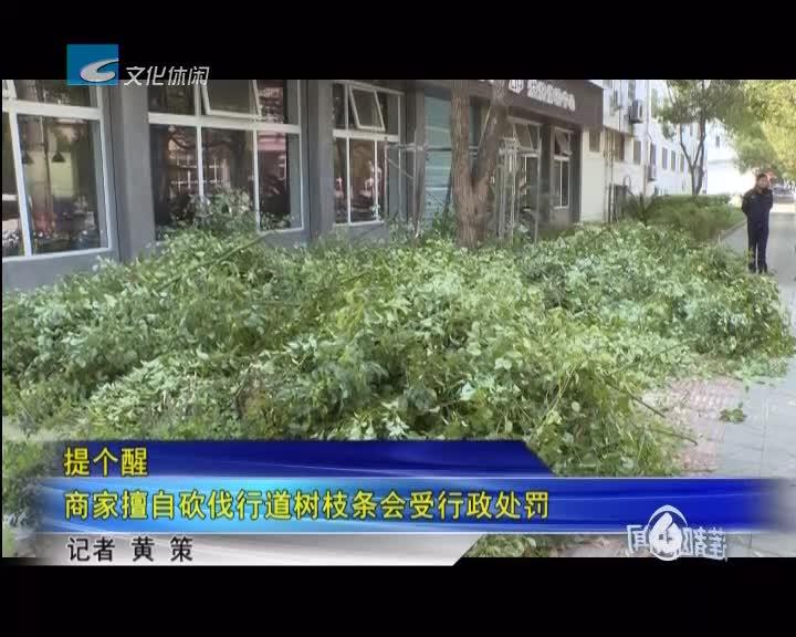 提个醒:商家擅自砍伐行道树枝条会受行政处罚