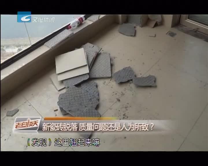 新瓷砖脱落 质量问题还是人为所致?