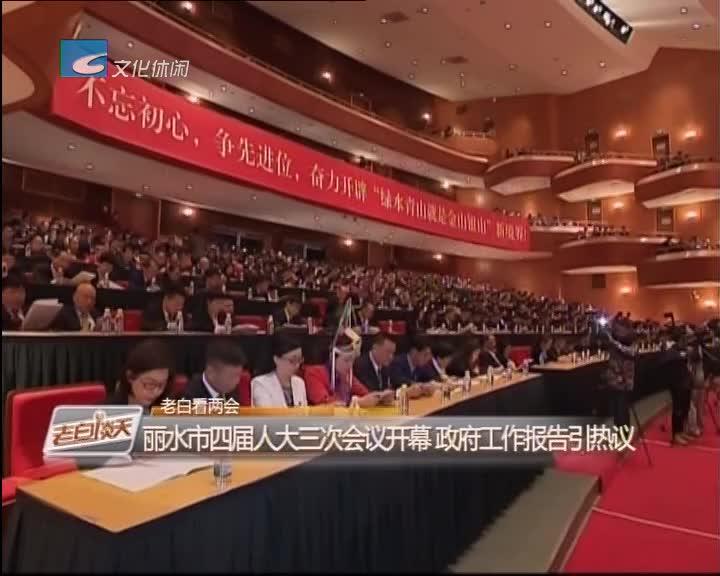 老白看两会:丽水市四届人大三次会议开幕 政府工作报告引热议