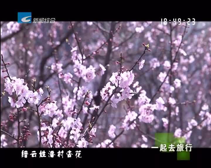 【一起去旅行】春暖花开